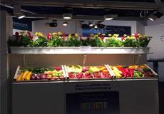 水果场景LED工程案例